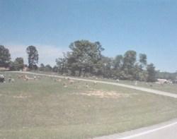 Cessna Cemetery