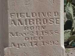 Fielding Davis Ambrose
