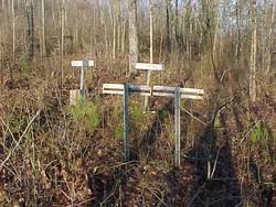 Polk Mountain Cemetery