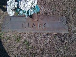 Helen <I>Johnson</I> Clark