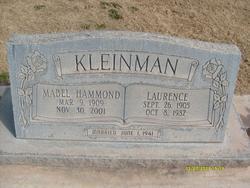 Lawrence H Kleinman