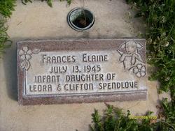 Frances Elaine Spendlove