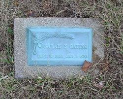 sarah frances raines cating 1853 1933 find a grave memorial
