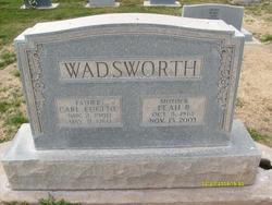 Carl Eugene Wadsworth