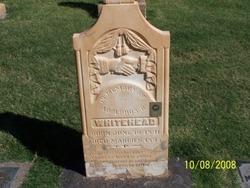 Adolphus Rennie Whitehead