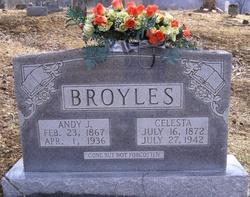 """Andrew Jackson """"Andy"""" Broyles"""
