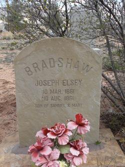 Joseph Elsey Bradshaw