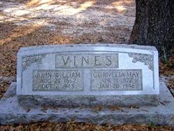 John William Vines