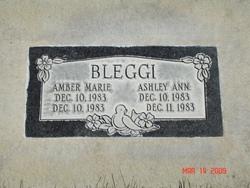 Ashley Ann Bleggi