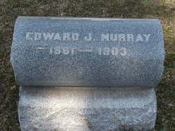 Edward J Murray