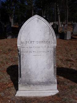Albert Burgess