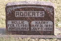 Nellie <I>Viles (Roberts)</I> Theiss
