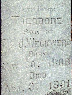 Theodore Weckwerd