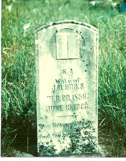 Sarah Ann <I>Moses</I> Hicks