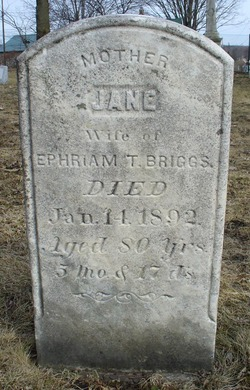 Jane <I>Flemings</I> Briggs