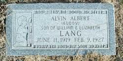 "Alvin Albert ""Buddy"" Lang"