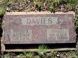 Phebe Ann <I>Reeves</I> Davies