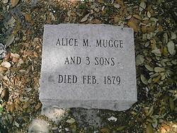 Alice M Mugge