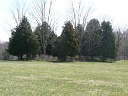 George Nicholas Tapscott Family Cemetery