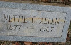 Nettie Henrietta <I>Carter</I> Allen