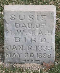 Susie Bird