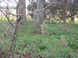 Byler-Marchant Cemetery
