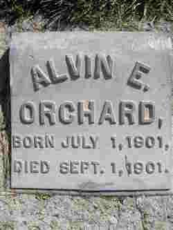 Alvin Eugene Orchard