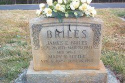 Mary Ellen <I>Little</I> Briles