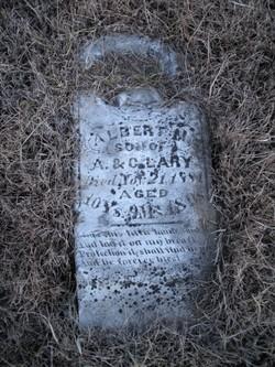 Albert M Lary