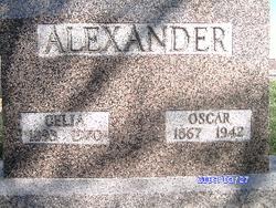 Celia Ann <I>Andis</I> Alexander