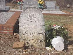 Walter Gavin Vines