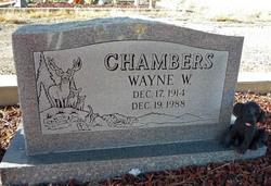 Wayne Wayne Chambers