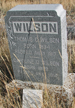 Thomas C Wilson