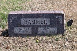 Amanda <I>Nelson</I> Hammer