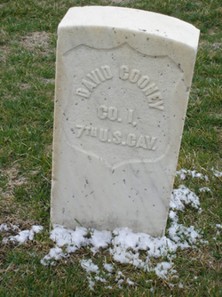 Sgt David Cooney