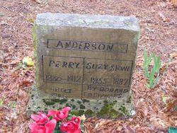 Commodore Perry Anderson