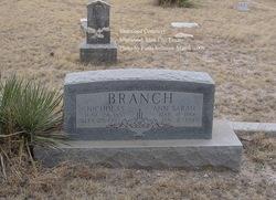 "Ann Sarah ""Annie"" <I>Murphey</I> Branch"