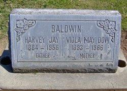 Viola May <I>Haskins</I> Baldwin