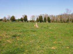 Fannie G. Tipton Burial Site