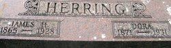 Dora <I>Johns</I> Herring