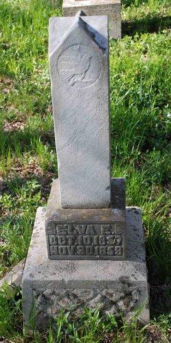 Elva E Parsons