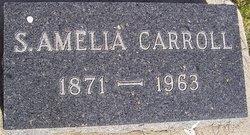 Selma Amelia <I>Enwall</I> Carroll