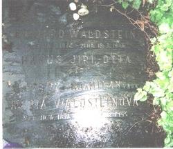 Berta Waldstein