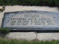 Tryphena Roseltha <I>Gallup</I> Ostler
