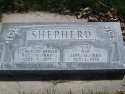 Asa Shepherd