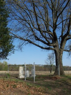 Bird Family Cemetery