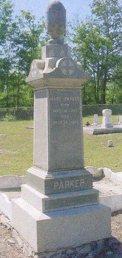 Mary <I>Lee</I> Parker