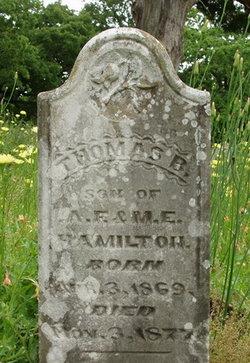 Thomas B. Hamilton