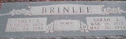 James Larkin Brinlee
