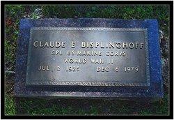 Claude E. Bisplinghoff